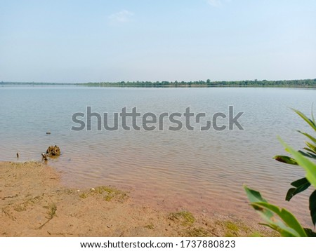 A landscape of blue  lake water with blue sky, shore,green leaves, water surface texture, brightness,  water background #1737880823