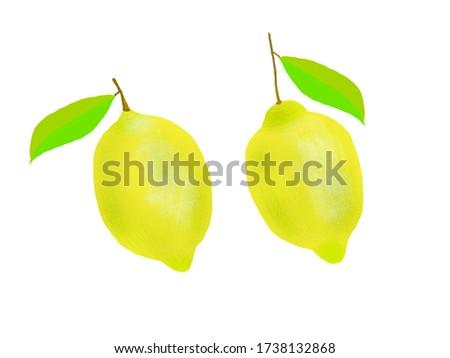 Lemons clip art, digital illustration