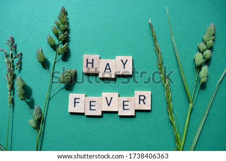 Hay Fever, words in wooden alphabet letters with fresh green grasses isolated on a green background Royalty-Free Stock Photo #1738406363