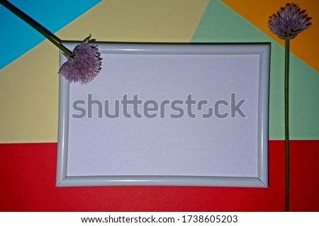 Colorful geometric texture paper pattern in yellow, blue, red, green with a picture frame in white with a chive flower.