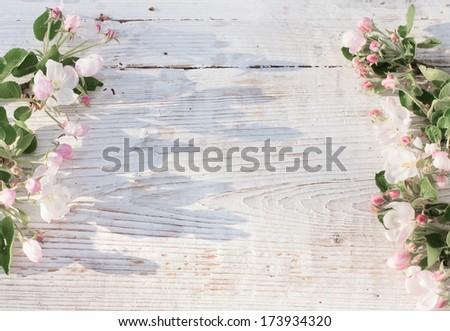 Apple blossom on white wooden background