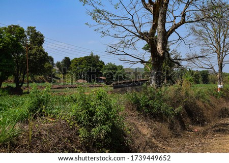 Small shelter in the middle of agricultural field for farmer #1739449652