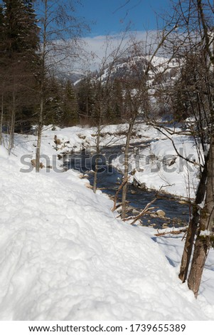 Mountains with Snow-covered Fir Trees, and Creek of Frozen Water. #1739655389