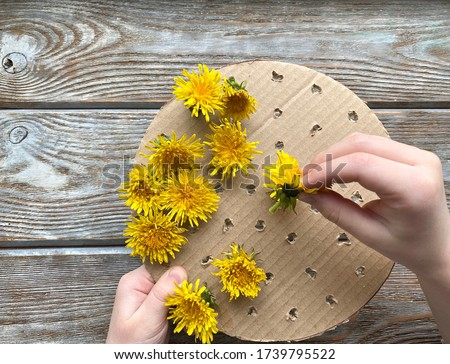 Step by step, how to make a children's craft, a picture of dandelions.