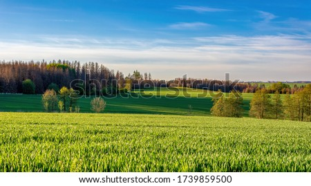 Beautiful green spring rural landscape with green field. Rural landscape. Spring landscape. Agricultural field in countryside. Beautiful Czach highland countryside #1739859500