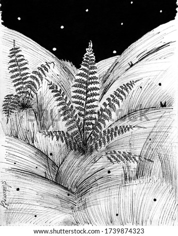Black and white illustration of fern thickets at night