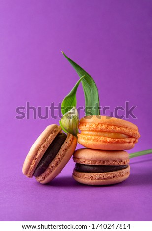 3 beige and yellow French macaroons and a green flower on a purple background, French cookies close-up #1740247814