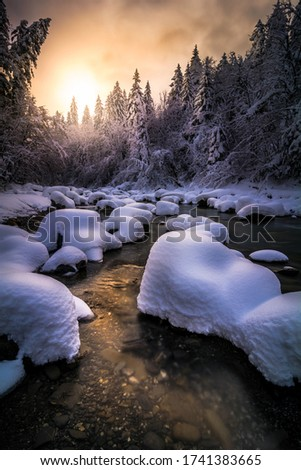Snowy mountain torrent with marshmallow-like rocks, snow-covered fir trees and golden sunset reflections in the water. #1741383665