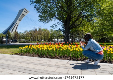 Young woman kneeling down to take pictures of colorful tulips with her cellphone, with the olympic stadium tower on the left hand side, in Montreal, Canada