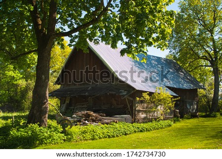 an old wooden barn in the countryside. in the photo, a green meadow, two large maples and the building itself