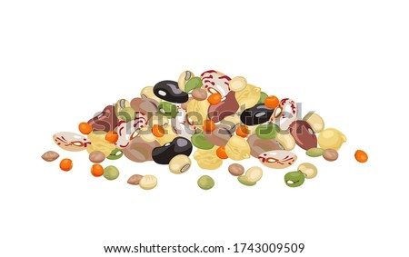 Heap of different beans and legumes isolated on white background. Pile of bean, green pea, chickpea, mung bean, soybean and lentil. Vector illustration of organic healthy food in cartoon flat style. Royalty-Free Stock Photo #1743009509