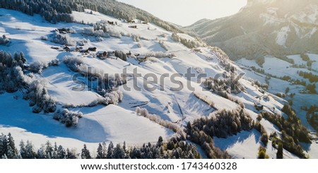 Aerial shot of snowy trees of winter pines in the hill. Dolomiti Alps, Italy. Beautiful nature landscape. Texture, pattern and structure. Volumetric sun light. Panoramic picture.