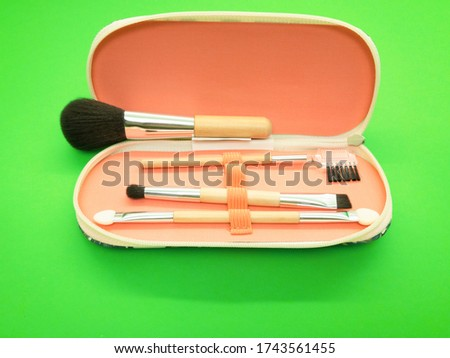 Makeup brushes in a case isolated on green background. Various set of professional makeup brushes. Case with powder brushes, eyebrow brush, eye brush and lip brush. #1743561455