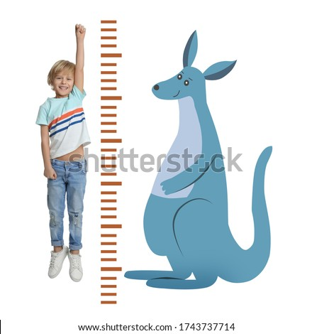 Little boy measuring height and drawing of kangaroo on white background