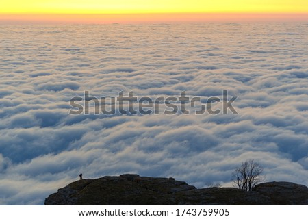 Autumn photos of the Crimean peninsula, night morning photos, blurry photographers, fogs of the Demerdzhi mountains, evaporation of water from the Black Sea
