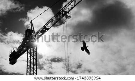 Tower crane and flying bird silhouette on sky with sun beams shining in clouds. Black and white lifting device with rolling trolley on jib and rook with spread wings on dramatic cloudscape background. #1743893954