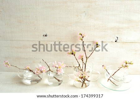 Pink cherry blossoms on white wooden background.image of spring season. #174399317