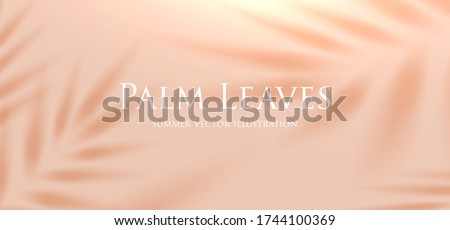 Tropical palm leaf shadow. Summer beach sand fashion background concept for travel vacation or ecological green cosmetics design. Eps10 vector. #1744100369