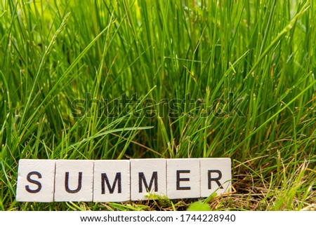 Image Summer,wooden alphabet June on green grass background with copy space for your text. Concept be used for calendar, month and background. Blur picture and exposure.