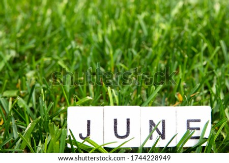 Image June,wooden alphabet June on green grass background with copy space for your text. Concept be used for calendar, month and background. Blur picture and exposure.