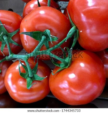 Macro photo red tomato. Stock photo red fresh vegetable tomatoes.  #1744345733