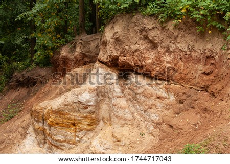 The surface of a sandy ravine in the form of a human face. The shape of the ravine resembles the eye and nose. Ravine in the forest close up #1744717043