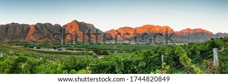 Panoramic View of the Slanghoek Valley near the town of Worcester in the Breede Valley in the Western Cape of South Africa Royalty-Free Stock Photo #1744820849
