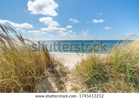 Dunes beach at the North Sea Royalty-Free Stock Photo #1745613212