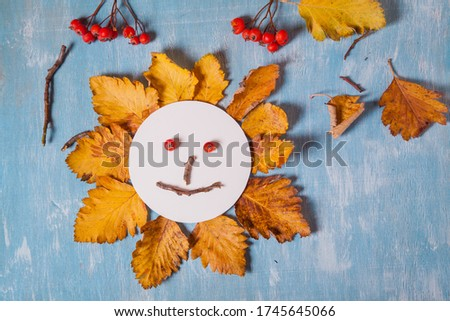 little child making autumn decoration from leaves and forest berries. Children's art project. DIY concept. Step-by-step photo instruction.