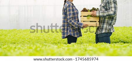Farmer harvest farm products and fresh vegetables in hydroponic organic farm for food supply chain and delivery to customer hand agriculture concept Royalty-Free Stock Photo #1745685974