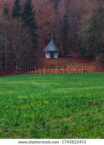 autumn September landscape wooden cabin on forest edge scenic view with green grass meadow and brown falling leaves country side wilderness rural environment space, vertical format of picture