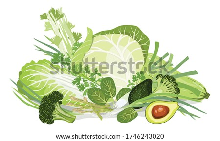 Composition of vegetables. Chinese-cabbage, White-cabbage, Squash, Leek, Green onion,Tats, Asparagus, Broccoli, Avocado, Peas, cucumbers, Parsley, Celery. Healthy nutrition.Vegan. Vector illustration. #1746243020