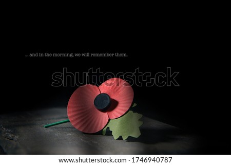 Creatively lit concept image for World War remembrance day where the red poppy is worn by millions around the world on their lapels as a symbol of remembrance to those fallen in war. Copy space. #1746940787