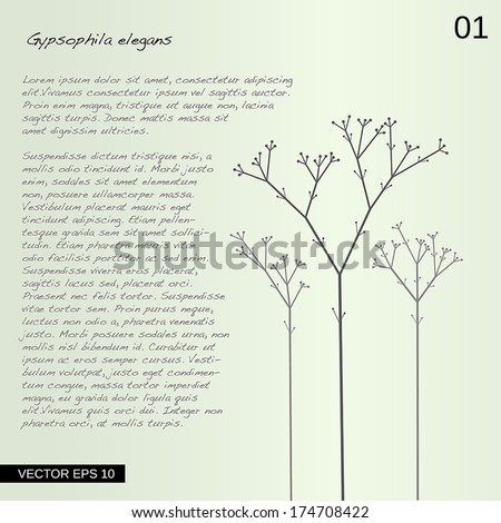 Vector abstract flower with text. Illustration. #174708422