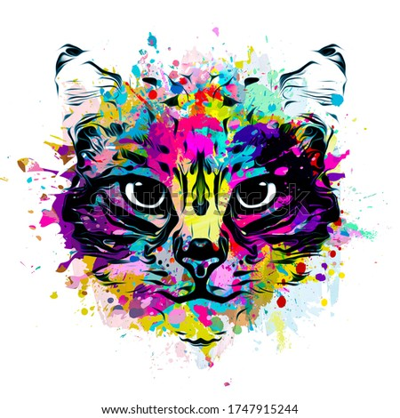 Cat head colorful illustration art