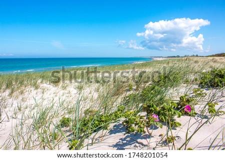 Baltic resort (Ostseebad) Dierhagen in the state of Mecklenburg Western Pomerania (Mecklenburg Vorpommern) Germany Royalty-Free Stock Photo #1748201054