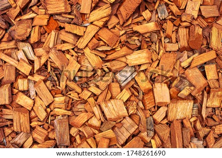 orange wooden splinters close-up. Decorative wood chips texture. Natural material pattern of red wooden pieces of tree bark. Full filled frame picture above view.