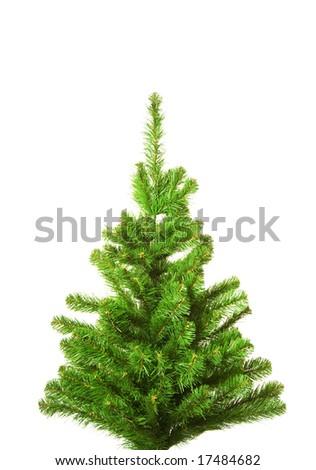 Christmas tree without decoration. Isolated on white background #17484682