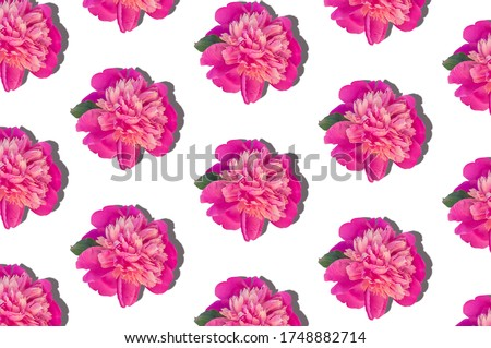 Pink peony flowers regular pattern made of photo on white color background. Blooming screensaver for mobile phone desktop website floral design. Paeonia plant with green leaves and colorful petals.