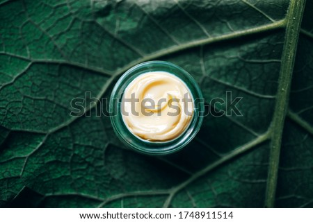 Texture of natural cosmetic cream for body care on a green leaf. Natural organic cosmetics from plants for skin care Royalty-Free Stock Photo #1748911514