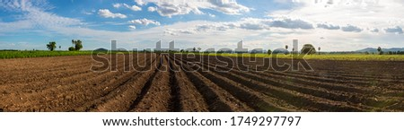 Panorama photo rows of soil before planting. Furrows row pattern in a plowed field prepared for planting crops in spring. Panorama view of land prepared for planting and cultivating the crop. Royalty-Free Stock Photo #1749297797