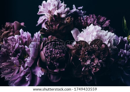 Beautiful Violet peonies bouquet on black. Floral background. Natural flowers pattern. Royalty-Free Stock Photo #1749433559