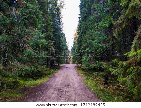 Forest road wilderness view. Wilderness forest road #1749489455