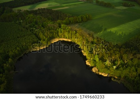 Aerial view of a forest lake. shoreline of a wild lake, surrounded by green trees, seen from a drone. Fields in the background. Royalty-Free Stock Photo #1749660233