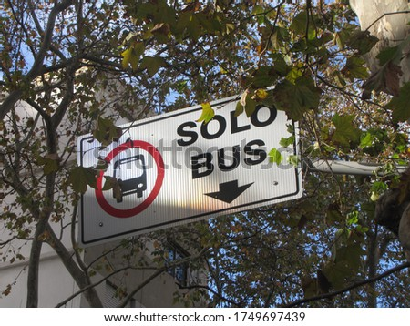 Poster sign with letters, text, translation: Only Bus. Street sign indicating the path only for public transport buses with leaves and sky in the background illuminated by sunlight generating shadows  #1749697439