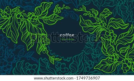 Coffee plant. Vector green background. Art line illustration. Tropical tree, aroma bean, leaves. Fresh farm plantation. Aroma arabica, robusta. Night forest  #1749736907