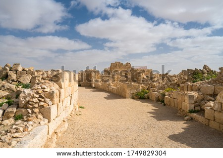 Scenic spring view of the ruined Ancient Nabataean city of Avdat, now a national Park, in the Israel's Negev Desert, Southern Israel. #1749829304