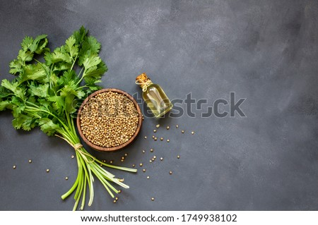 Glass bottle of coriander essential oil with coriander powder and fresh cilantro leaves on rustic table, aromatherapy massage oil concept ( coriandrum sativum ) #1749938102