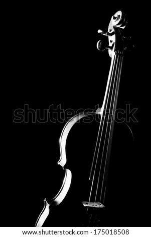 Violin musical instruments of orchestra isolated on black. #175018508