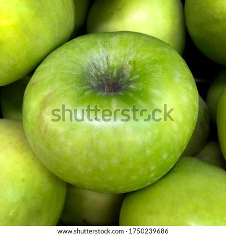 Macro photo fruit green apple. Stock photo nature food green apple
